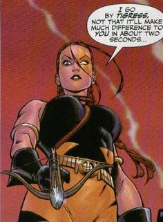 Artemis Crock as Tigress Artemis Young Justice, Dc Injustice, Artemis Crock, Arrow Oliver, Batman, Black Canary, Teen Titans, Gotham, Comic Art