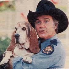 """Another basset hound celebrity: Flash from """"The Dukes of Hazzard"""""""