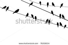 vector birds sitting on wire by lilac, via Shutterstock