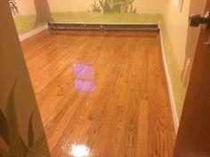 Four Corner Floors LLC - Jamaica, NY, United States. New oak floor installed