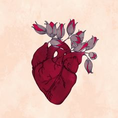 corazon humilde