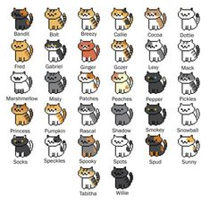 Kittie's names! I rename all mine, but I know them by their actual names and the ones I gave them