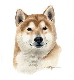 SHIBA INU Dog Watercolor Painting ART Print Signed by k9artgallery