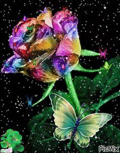 Mardi's Amazing Funpagez Beautiful Flowers Images, Beautiful Love Pictures, Flower Images, Beautiful Roses, Rose Flower Wallpaper, Butterfly Wallpaper Iphone, Flowers Gif, Good Night Prayer, Good Night Gif