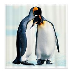 Penguins In Love...they mate for life <3