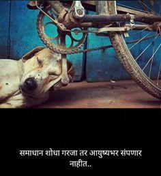 Marathi Quotes On Life, Marathi Poems, Jokes Quotes, Life Quotes, Yogi Tattoo, Marathi Status, Motivational Quotes, Inspirational Quotes, My Emotions
