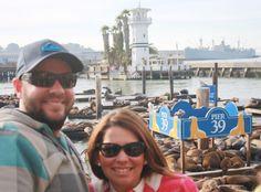 Sea Lions at Pier 39 in San Francisco, CA