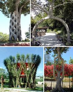 Some forms of sculpture take a bit more patience than others. Plant shaping and bonsai pruning are two examples of art that takes years. With patience comes permanence, however, as a properly shaped plant will impress generations. (Images via dlewis, smsread, worldsstrangest, perpustakaan) Shaped trees are most often manicured for decorative purposes only, but they [...]