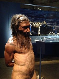 Twitter / Airfixman: This Neanderthal man lived ...