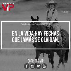 Jamás.!! ____________________ #teamcorridosvip #corridosvip #corridosybanda #corridos #quotes #regionalmexicano #frasesvip #promotion #promo #corridosgram