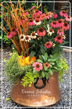 Easier than you think this is THE perfect fall cocktail container garden. Thyme creeping Jenny coneflowers Sage pumpkins and fall grasses are the perfect fall combination! Step-by-step instructions included. Flower Farm, Diy Container Gardening, Container Garden Design, Beautiful Flowers, Indoor Gardening Supplies, Planters, Flowers, Container Gardening, Herb Planters