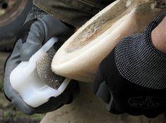 RADIUS RASP: Mustangroll einfach gemacht. Mit dieser neuen Raspel kann jeder Hufe gleichmäßig abrunden und eine ordentliche Mustangroll anbringen. Ideal auch einfach zum Abrunden, um die Zeit zum nächsten Ausschneidetermin zu überbrücken. Genial für Wanderreiter oder Distanzreiter unterwegs. Die Raspel ist handlich und schnell verpackt.  http://gg-reitsport.de/