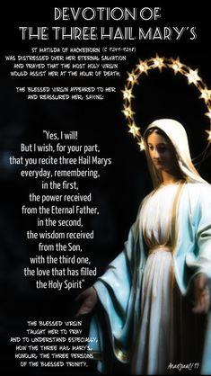 3 Hail Marys each dayYou can find Hail mary and more on our Hail Marys each day Catholic Beliefs, Catholic Quotes, Catholic Prayers, Religious Quotes, Religious Studies, Christianity, Catholic Lent, Novena Prayers, Catholic Saints