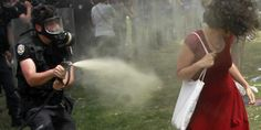 Turkish policeman sentenced to plant trees for gassing the 'lady in red' http://read.bi/1I25e10