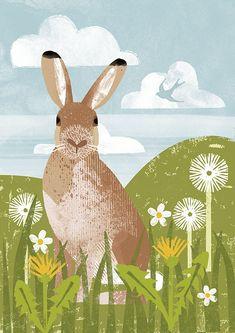 C&C Wildlife Cards - Kate McLelland Illustration