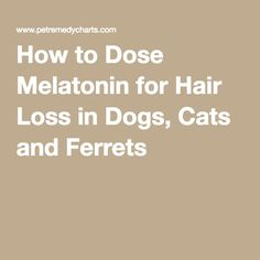 How to Dose Melatonin for Hair Loss in Dogs, Cats and Ferrets