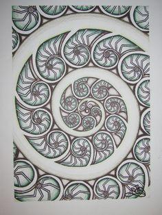 Koru Polynesian Designs, Polynesian Art, Maori Designs, Maori Symbols, Spiral Tattoos, Maori Patterns, New Zealand Art, Nz Art, Architecture Art Design