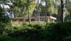Statt Fernsehen gibt es Naturspektakel! Das Ferienhaus, das direkt am Kleinen Pälitzsee an der Mecklenburgischen Seenplatte liegt, bietet einen wunderbaren Run