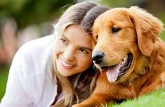 The Sydney Dog Trainer is Sydney's MOST trusted in home dog training specialist and dog behaviourist! Puppy, behavioural and dog obedience services available. Pet Friendly Cabins, Emotional Support Animal, Dog Anxiety, Most Popular Dog Breeds, Pet Day, Diabetic Dog, Love Pet, Golden Retrievers, Shih Tzu