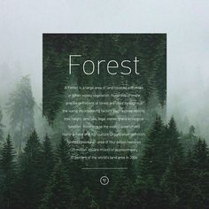 NATURE on Behance
