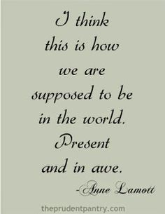 I think this is how we are supposed to be in the world. Present and in awe. - Anne Lamott