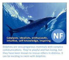 Keirsey types. NF dolphin-- INFJ