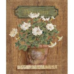 Petunia Art Poster Print by Gloria Eriksen,11x14  Home & Kitchen