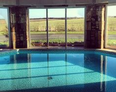 Morton Pitmilly, Kingsbarns, St Andrews, Fife, Scotland,  #WeAcceptPets PetFriendly. Holiday. Travel. Walks. Day Out. Dog Friendly.
