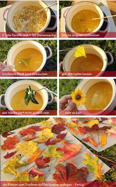 Herbstblätter konservieren