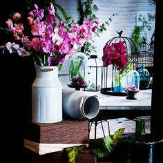 #MandarinaHome #Mandarina #orquidea #lechera #teka #mesa #cesta #mimbre #decoración #regalo #primavera #primavera2015