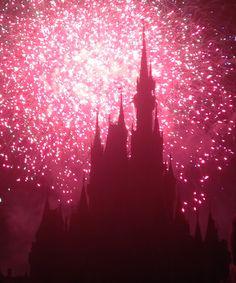 Disney Park Pictures ~M