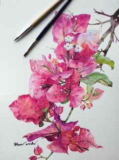 Botanical Art, Botanical Illustration, Watercolor Illustration, Watercolor And Ink, Watercolor Flowers, Watercolor Paintings, Watercolors, Art Folder, Flower Wallpaper