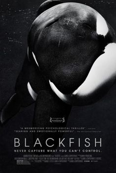 Blackfish. Yes I know whales aren't fish but this documentary is a must see for anybody with an interest in these animals