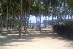 The Beach at Ada Foah is bordered by the Atlantic Ocean and the Volta River Estuary - read more at http://madamenoire.com/211900/travel-abroad-the-black-star-guide-to-ghana/