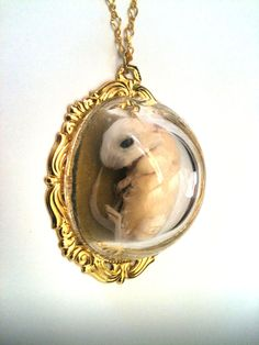 """Lauren Kane: """"Kitten Mouse Necklace"""" (taxidermy mouse in glass pendant)"""