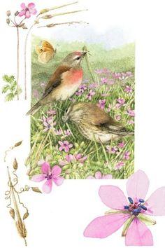 Birds in a Field by Marjolein Bastin