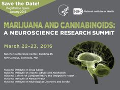 Marijuana and Cannabinoids: A neuroscience research summit