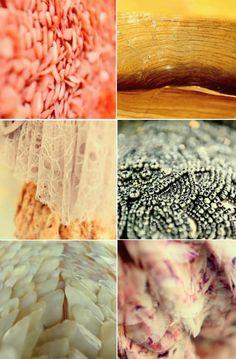 Alexander McQueen Spring 2012 patterns
