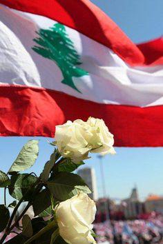 Lebanese Flag and Flower