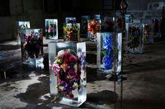 Une usine de la ville de Saitama, a été transformée en galerie d'art. Azuma Makoto artiste botanique et son équipe ont mis en place une installation composée de 16 gros blocs de glace. Dans les blocs de glace, on pouvait découvrir des bouquets de fleurs exotiques, figées dans le temps et dans la glace. Au cours des dernières années, l'artiste botanique s'est intéressé à l'observation des bouquets de fleurs dans des cadres uniques, offrant une perspective sur la vie et la mort de la plante