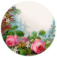Decoupage Plates, Topper, Most Beautiful Flowers, Adult Coloring Pages, Circles, Spiderman, Banner, Tropical, Embroidery