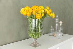 Påskegule ranunkler i glassvase. Glass Vase, Home Decor, Decoration Home, Room Decor, Home Interior Design, Home Decoration, Interior Design