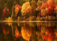 [Bellos colores de otoño...] » Beautiful colors
