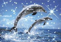 Glitter gifs » Dolphins Glitter