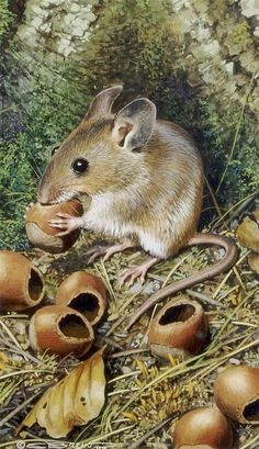 Carl Brenders, (Belgian, b. 1937), A Pair of paintings depicting mice