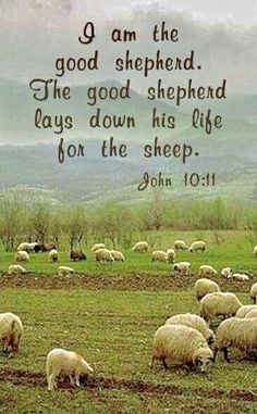 I Am the good Shepherd.Speaking of Christ Jesus.the Son of God Jehovah. Lord Is My Shepherd, The Good Shepherd, Christian Life, Christian Quotes, Christian Pictures, Jesus Quotes, Bible Quotes, Soli Deo Gloria, Jesus Is Lord