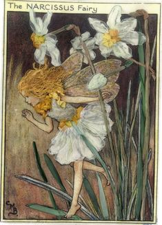 Sheer Inspiration: A. Embroidered Designs » A. Flower Fairies » The Narcissus Fairy