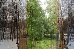 Les quatre saisons dErik Solheim Photo