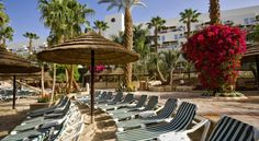 Isrotel Royal Garden All-Suites Hotel Eilat Located in the Lagoon area of Eilat's North Beach, the Royal Garden is set among palm-filled gardens and 5 free-form pools. It has a gourmet restaurant and spacious suites with fully-fitted kitchenettes.