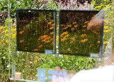 Revolutionary new solar windows can generate 50 times more energy than conventional photovoltaics